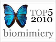 top-5-2010-biomimicry-articles-robaid
